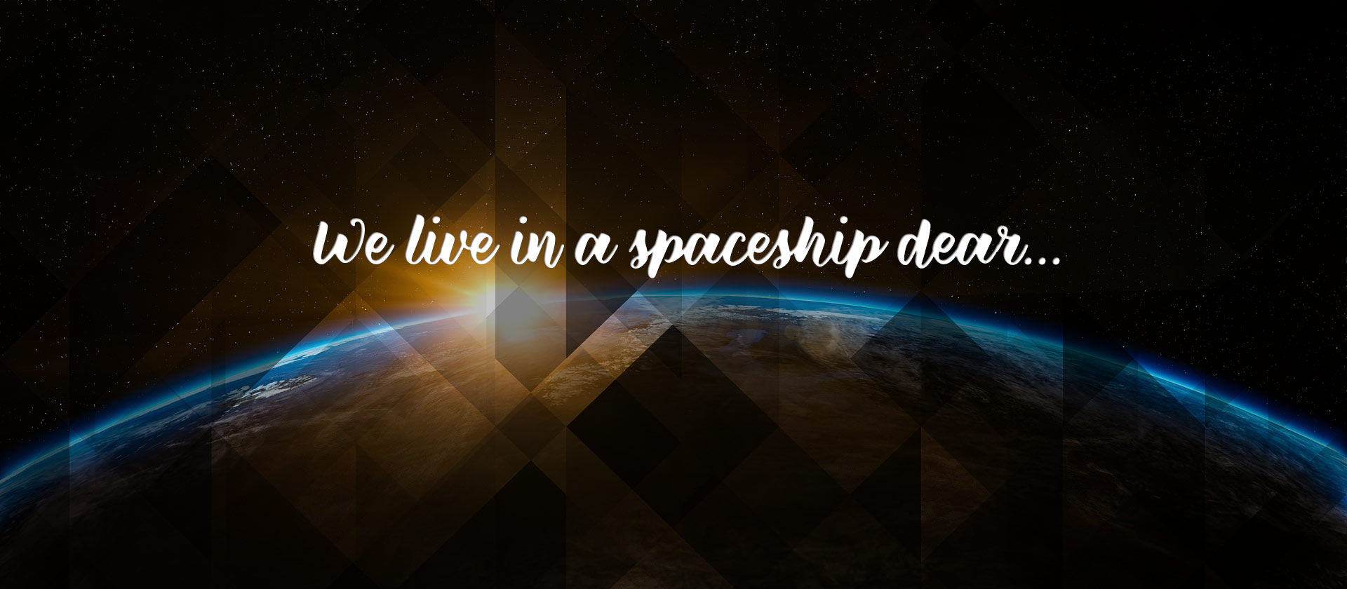 We Live in a Spaceship Dear
